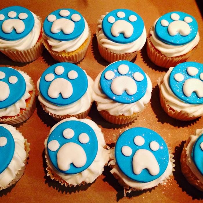 Paw Patrol Cakes And Cupcakes